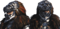 Cullen lion helmet.png