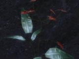 Blood Lotus (Origins)