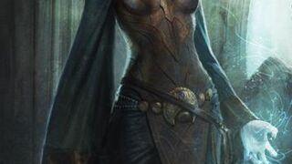 Herkunftsgeschichte Menschlicher Adeliger | Dragon Age Wiki | FANDOM ...