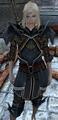 Orlesian Lancer Armor.png