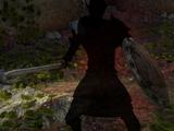 Теневой воин
