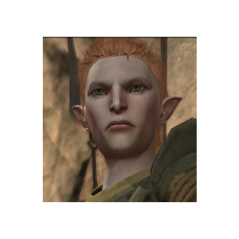 Pol in <i>Dragon Age: II</i>