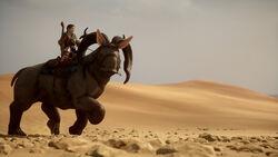 Наголопа в пустыне