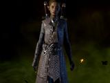 Refined Prowler Coat Schematic