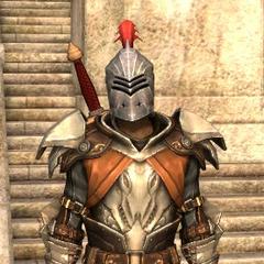 Lieutenant armor