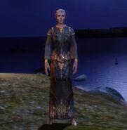 Одеяние мага(эльф)