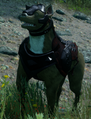 Hessarian Hound.png