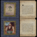 Champion of Kirkwall book cover.png