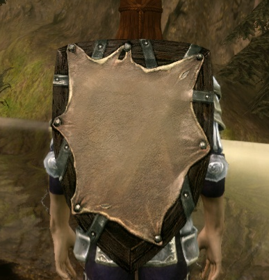 Wooden Kite Shield Dragon Age Wiki Fandom Powered By Wikia