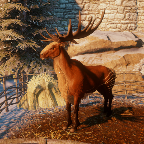 Red Hart mount