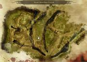 Verwundet im Wald Karte
