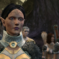Merrill with her clan in <i>Dragon Age: Origins</i>