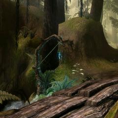 Elfisches Zeichen im Wald
