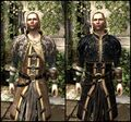 DA2 Renegade's Coat - Before and After Comparison - Anders companion armor.jpg