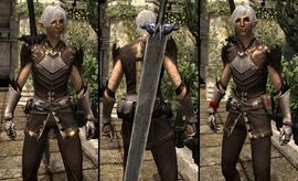 DA2 Grafted Spirit Hide - Fenris companion armor