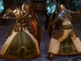 Knight-Captain's Regalia (Honor)