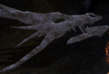 The Lost Dragon Bones.png