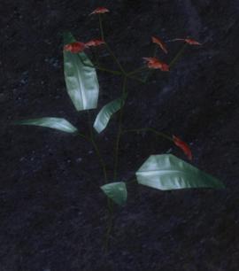 Кровавый лотос (скриншот)