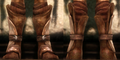 Cadash Stompers Image.png