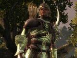 Kodeks: Starodawna elficka zbroja