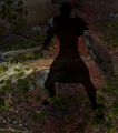 Shadow Warrior.png