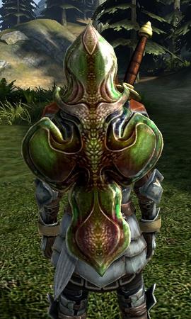 Щит леди-рыцаря