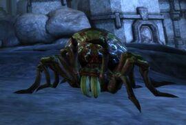 Гигантский ядовитый паук