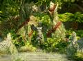 Altar-of-Mythal.png