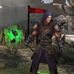 Rion in <i>Heroes of Dragon Age</i> (Tier IV)