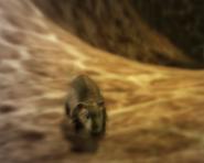 Мышь(мышь)