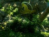 Die winzigste Höhle