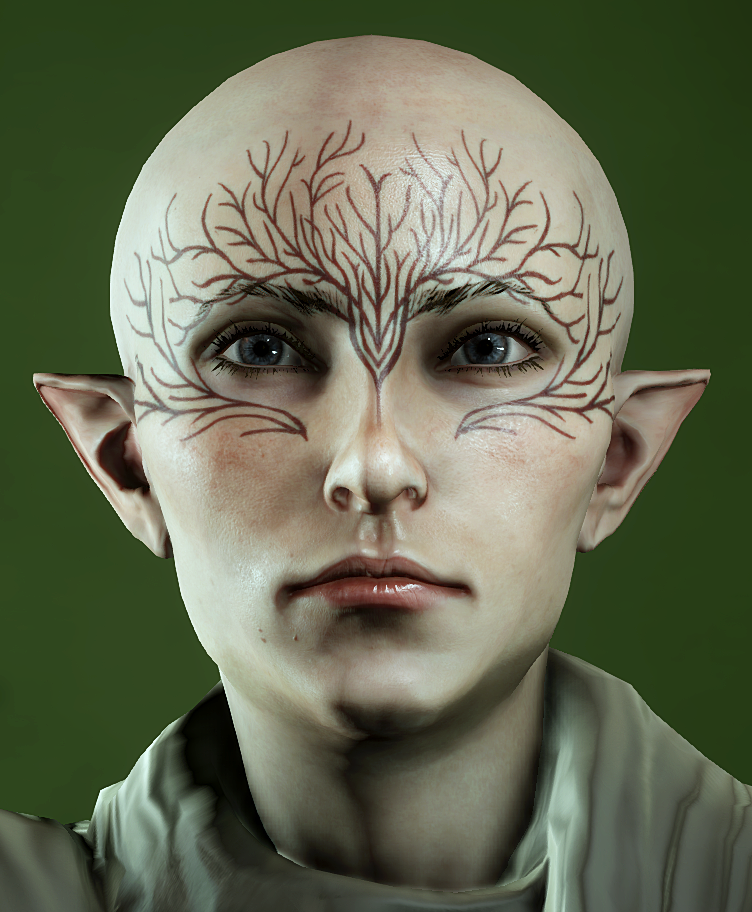 Vallaslin Dragon Age Wiki Fandom Powered By Wikia