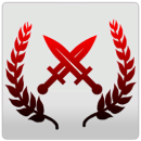 Мастер оружия (достижение)