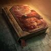 Portal guide 100px