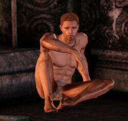 Quest-Captured Alistair