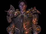 Clamshell Plate Armor