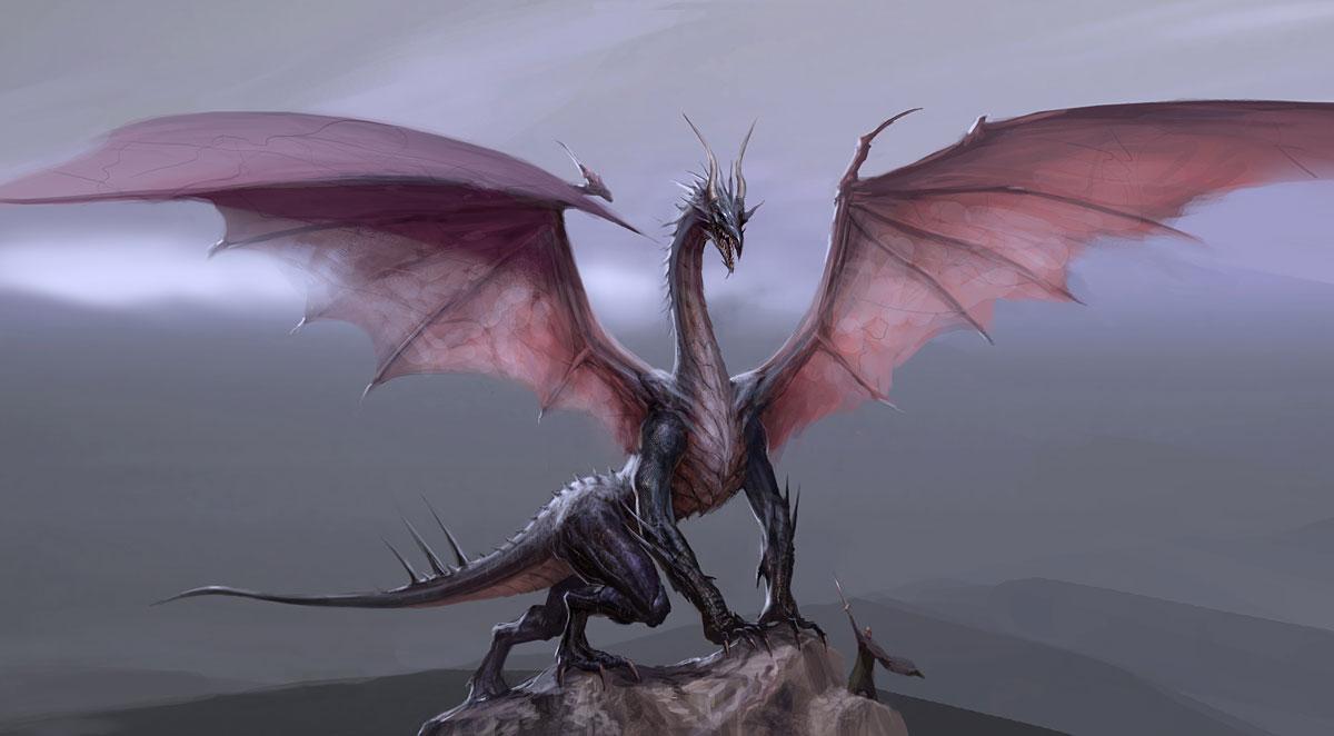 high dragon dragon age wiki fandom powered by wikia. Black Bedroom Furniture Sets. Home Design Ideas