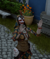 Harlequin Tag Quest Image.png