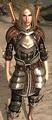 Mercenary's Reinforced Plate.png