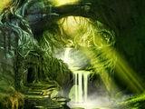 Кодекс: Бресилианский лес