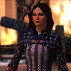 Bethany's Grey Warden Uniform