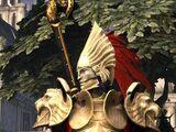 The Golden Prince's Raiment