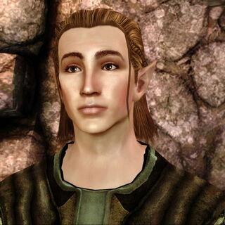 Varel Baern - zwerbowany w elfim obcowisku.