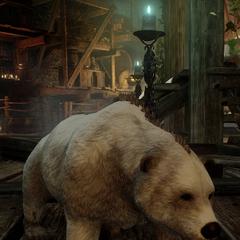 Chauncey, miniaturowy niedźwiedź w <i>Inkwizycji</i>