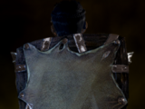 Укрепленный щит