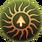 Twisting Veil icon