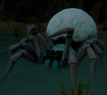 Fade-Touched Spider.png