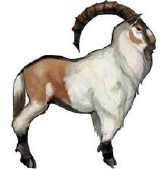 Ram concept