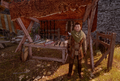 Skyhold-Merchant-(Weapons).png