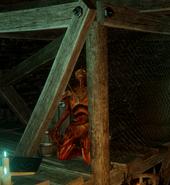 Идол Мередит в Черном магазине (DAI)